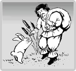 の 白兎 因幡